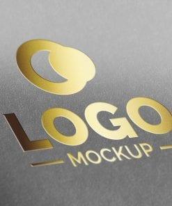 logo mockup 3
